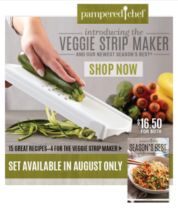 Veggie Strip Maker Consumer Email