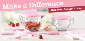 Help Whip Cancer - Large Banner Ad